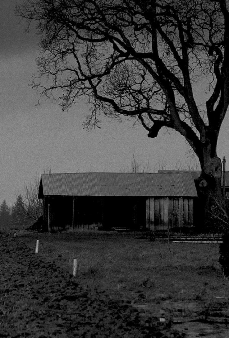 Twilight of despair... by thewolfcreek
