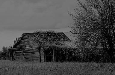 Of rural decline... by thewolfcreek
