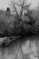 Sweet waters of Lethe... by thewolfcreek