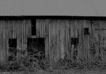 A lost domain II... by thewolfcreek