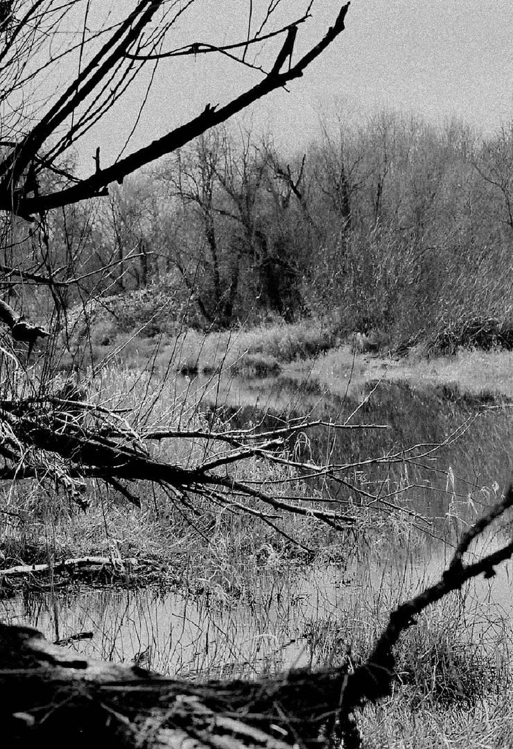 Of gloom and sorrow... by thewolfcreek