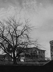 Twilight of gloom... by thewolfcreek