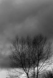 Darkness looms... by thewolfcreek