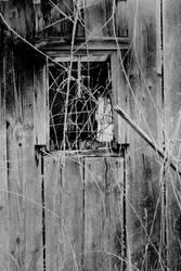 Broken window... by thewolfcreek