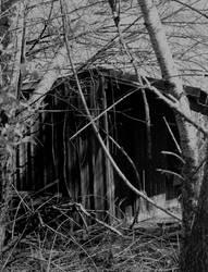 Please come in... by thewolfcreek