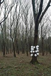 iamamiwhoami - balloons 1