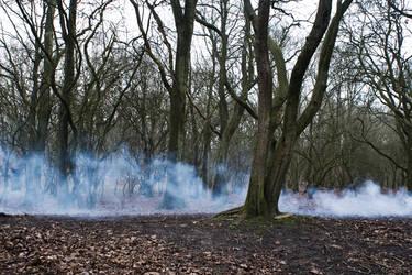 iamamiwhoami - smoke