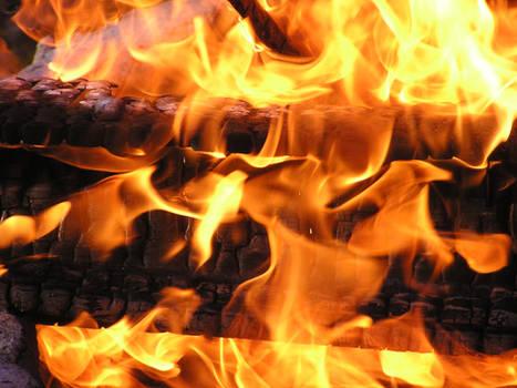 Close up of burning wood stock SM1