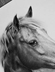 Close-up by Odette1994