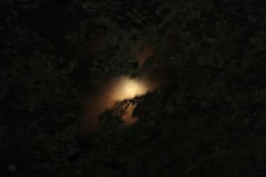 burning the night sky