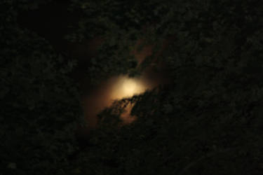 burning the night sky by bassplayinninja