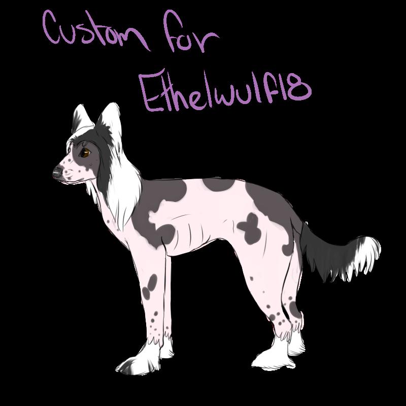 Custom for Ethelwulf18
