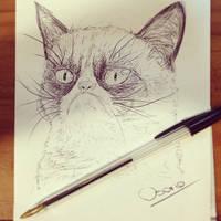 Grumpy Cat by OSCARINXART