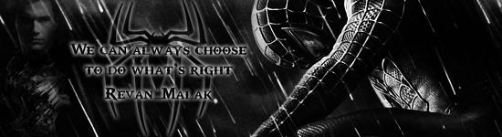 Spider-Man - Dark Knight by Rex-Fox-Cody
