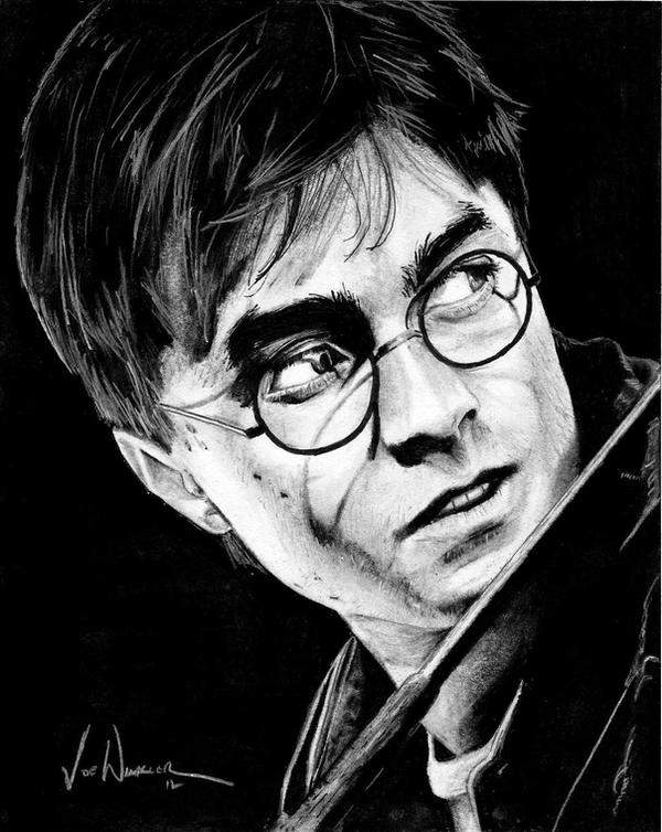 Harry Potter Project: Harry James Potter by ...