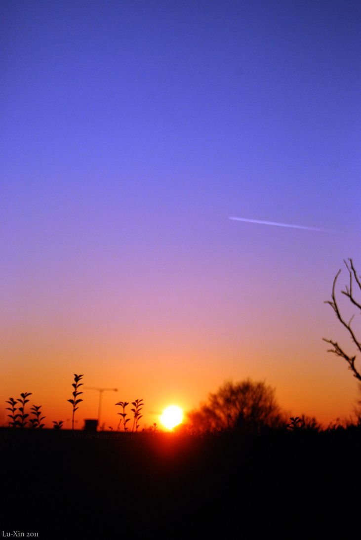 The Winter Sun by Lu-Xin