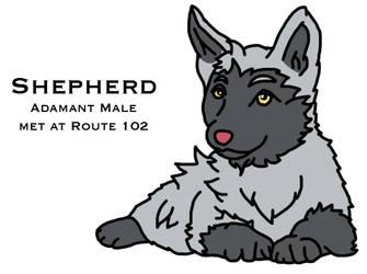 Shepherd by cola329