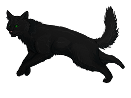 Warriors: Hollyleaf REDRAW by Tigerstar406