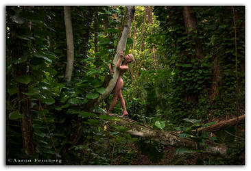Tree Nymph VI by aFeinNude