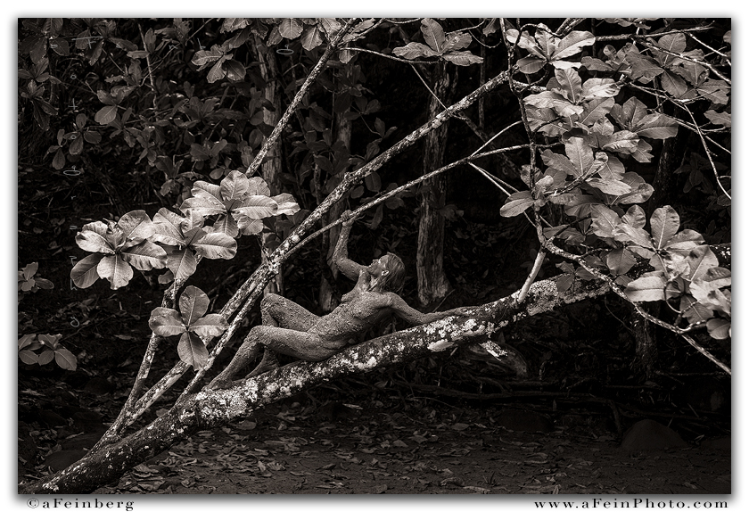 Branch Out by aFeinNude