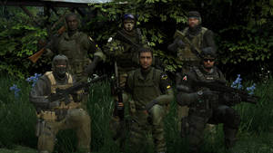 Rise of the PMCs