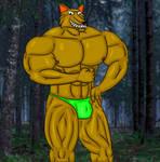 Darius the Werewolf
