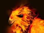 Phoenix - 'Burning mane'