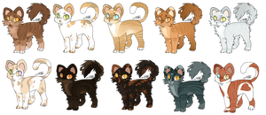 Cat Adopts    6/10 [OPEN - SALE]