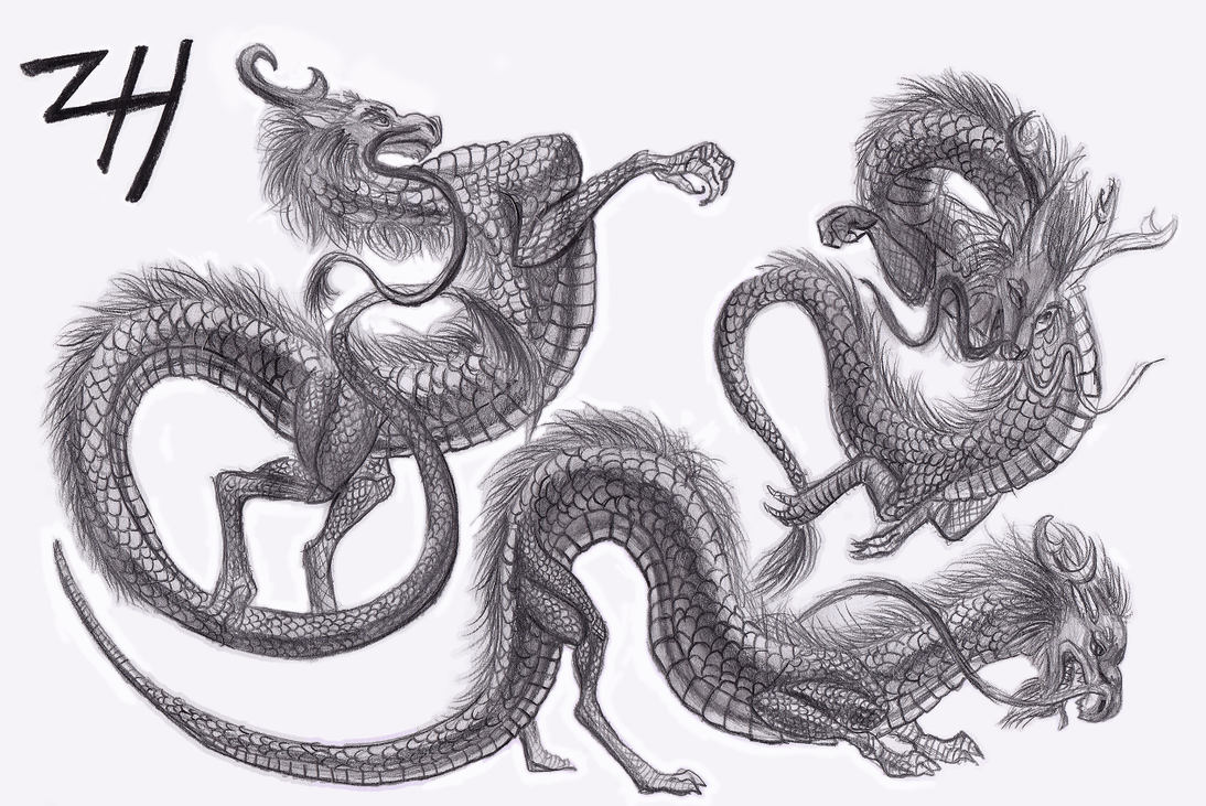 Sketches Of Dragons