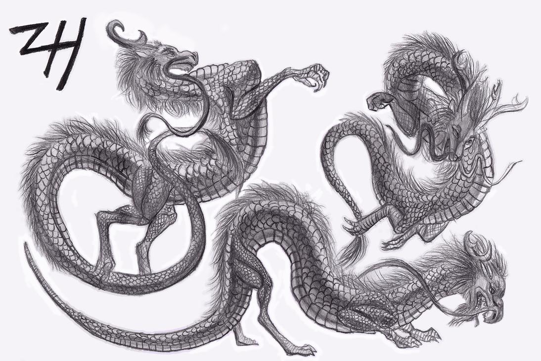 Chinese Dragon Sketches 2 by ZoeHildebrand-R on DeviantArt