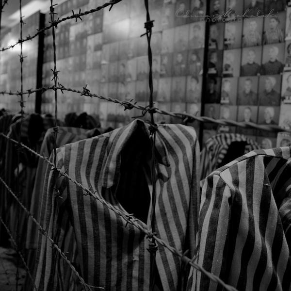 Auschwitz memorial. by dragonfly-oli