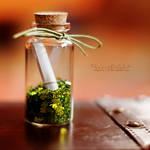 15.52 - Bottle of Luck. by OliviaMichalski