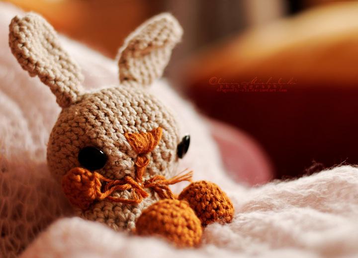 Jump, little rabbit. by dragonfly-oli