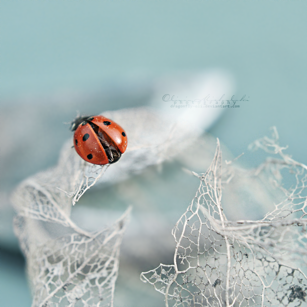 Alone. by OliviaMichalski
