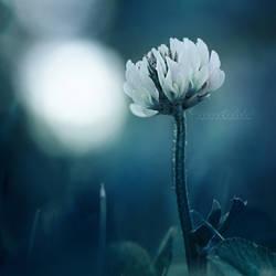 In my little world.. by OliviaMichalski