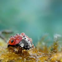 The Underwater King. by OliviaMichalski