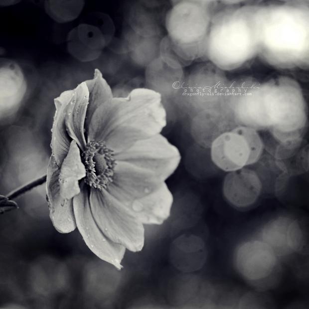 Souls around me. by dragonfly-oli
