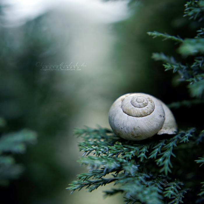 Lonesome. by OliviaMichalski