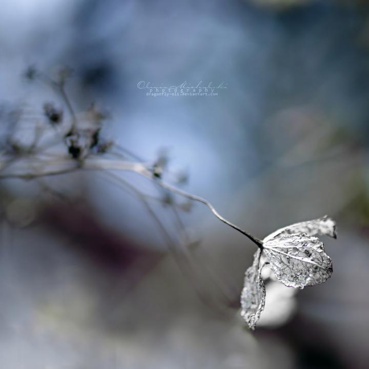Sleepwalking. by dragonfly-oli