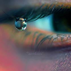 Tears of a Fairy. II