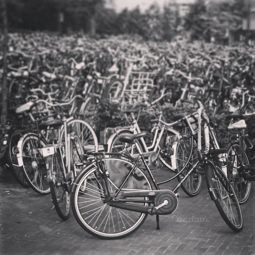 Bikes in Venlo. by OliviaMichalski