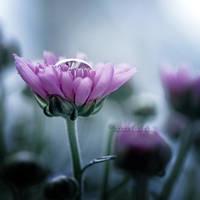 Flourishing. by OliviaMichalski