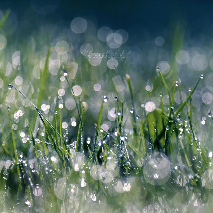 Purely Refreshing. by OliviaMichalski