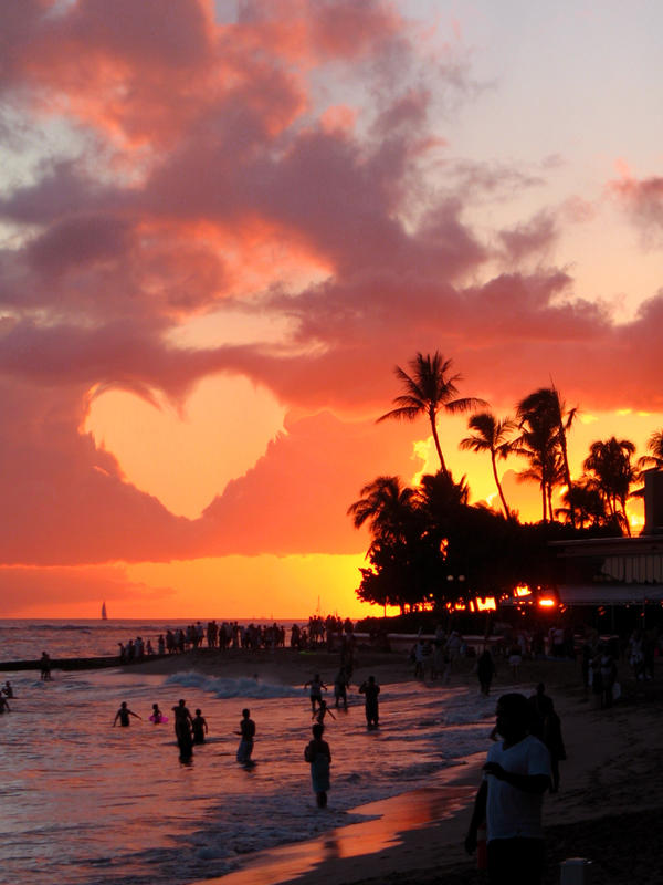 ++ paradise + love impact