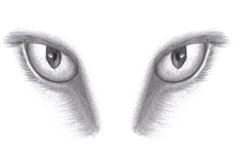 pair of eyes drawing images