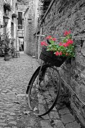 Belgium - Nostalgie by slecocqphotography