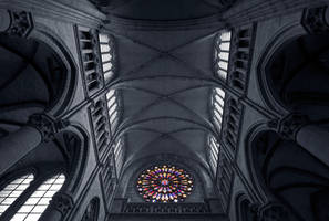 Ieper - Rose Window by slecocqphotography