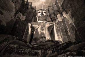 Buddha by slecocqphotography