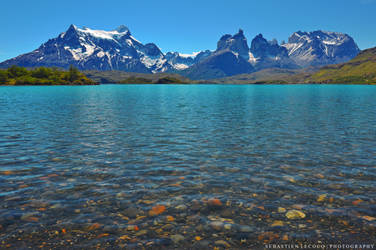 Chile - Pehoe Lake by slecocqphotography
