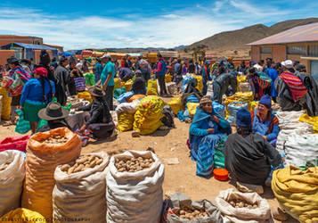 Bolivia | Sunday Market by slecocqphotography